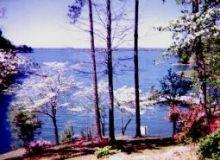 Burke Cove on Lake Martin